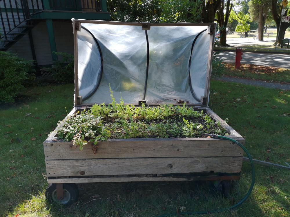 moveable raised garden bed