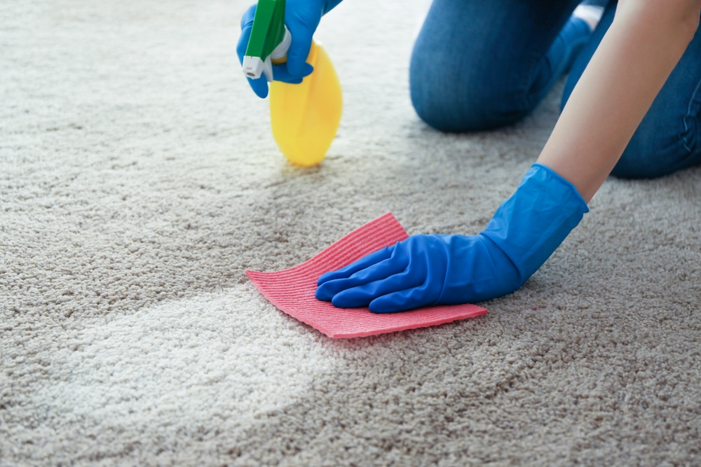 cleaning carpet with DIY floor cleaner